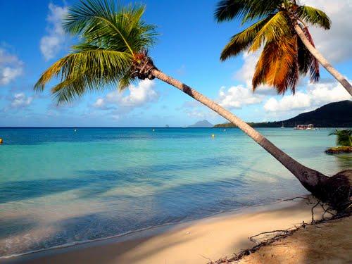 Août en Martinique